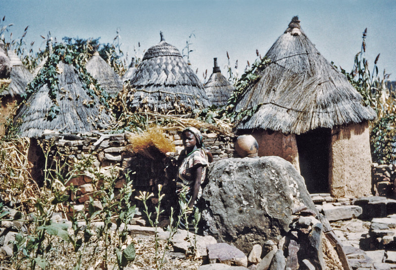 Nigeria, Village of Tula (1959) - scene showing mud and stone huts of the school-master's compound. Note varieties of thatch on the roofs. Crop growing is maize.
