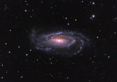 NGC 5033