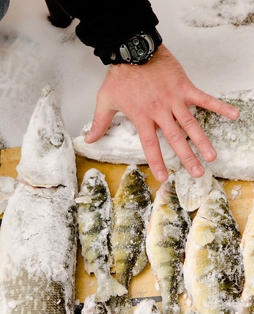 Randy David Ice fishing 2-2-13  2103