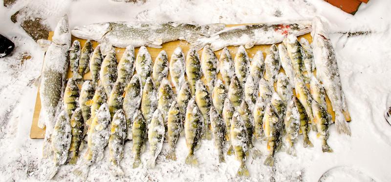 Randy David ice fishing 2-2-13  2102