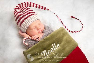 Noelle-11