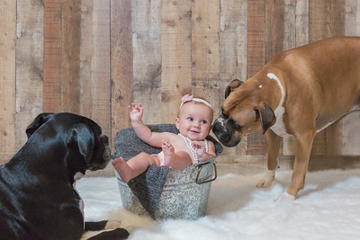 Chadwell Siblings  Three months later, Gracie and Jax realize this new puppy is staying for good.