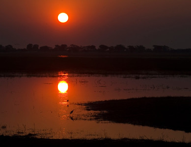 Sunset At Chobe National Park, Botswana