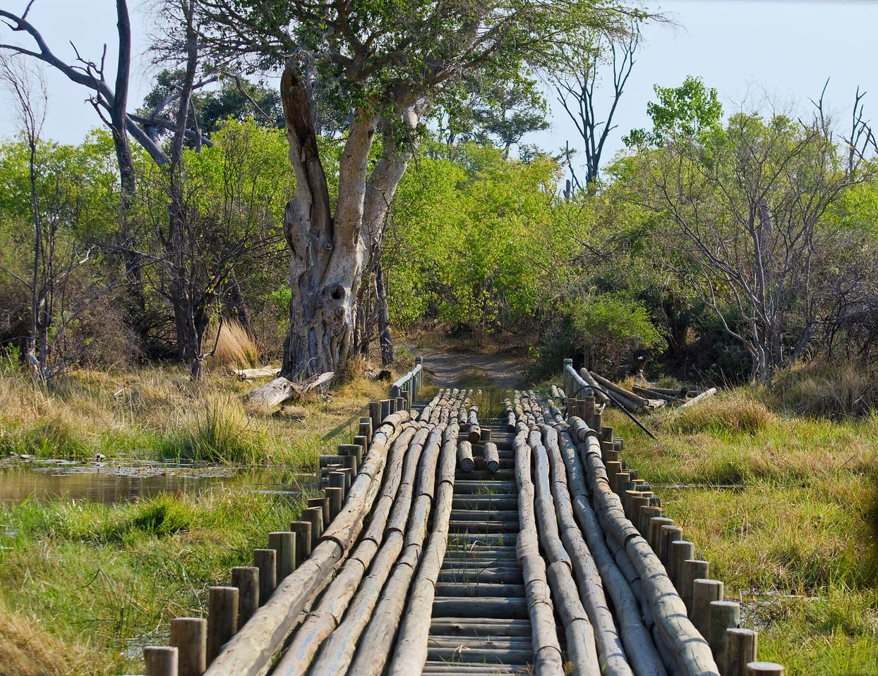 Bridge Over The River Kwaii