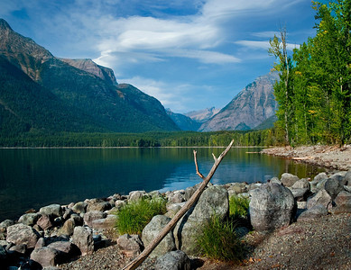 Lake McDonald Landscape
