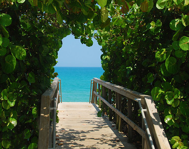 Portal To Jupiter Beach