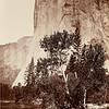 Tutocanula, 3600 ft., El Capitan, Yosemite