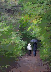 Early Autumn Walk
