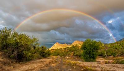Rainbow_Over_Catalina_State_Park