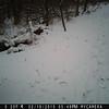 P247-511-292-256-001h-0234-c10-l059-08-0360-1080-0359-1079-000-LB00-1