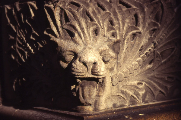 Lion Face, New York City.
