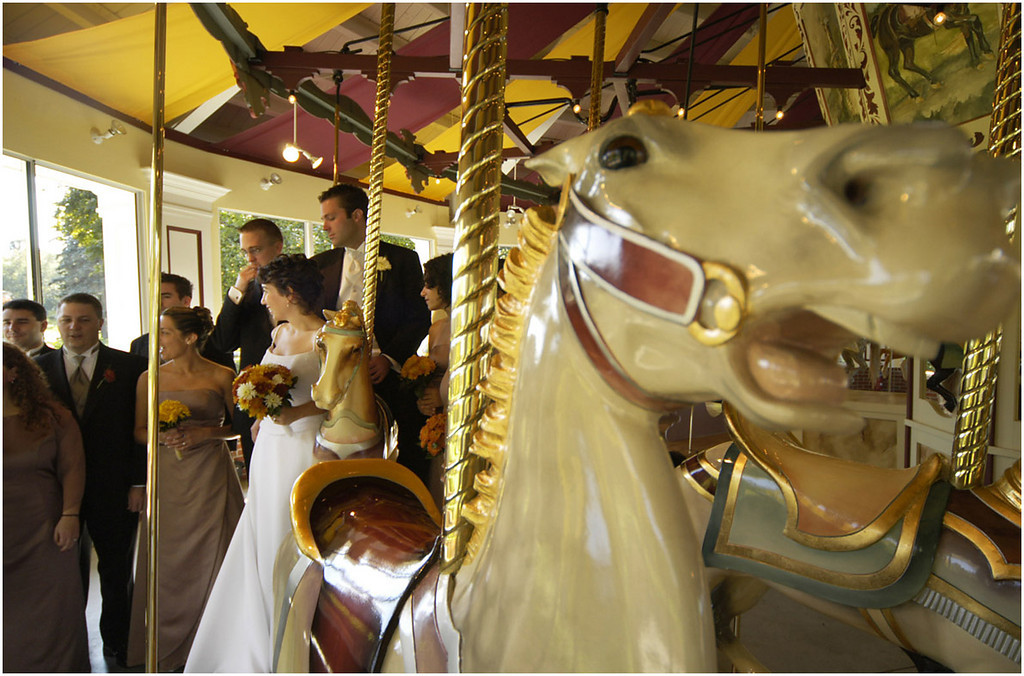 7.94x5.25deep----Ana Zangroniz Enterprise photo for daily use, to run Sat. 10.2.04. Members of the Bellamore-Lis wedding party gather around the Congress Park Carousel in order to have formal portraits taken, on Friday afternoon, October 1. The bride-to-be, Linda Bellamore (in white), and groom Kyle Lis (directly behind Bellamore) reside in Saratoga Springs.