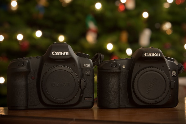 My previous DSLR (30D) appears to be quite a bit smaller than my new one