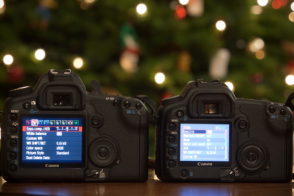 """The 5D Mark II's LCD is definitely bigger, but does not seem as bright as the 30D's (a coworker pointed out that this may be because the 5D's LCD brightness is currently set to """"Auto"""")"""