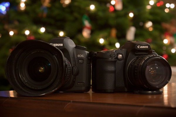 Canon's latest 21MP beast with their first generation 6MP DSLR...are also my latest and first DSLRs