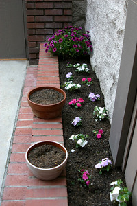 Valerie's freshly planted garden...a good low-contrast test