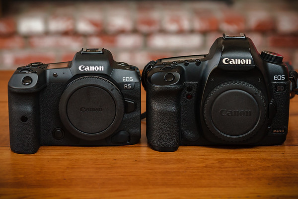I pull out the Canon 30D, my backup DSLR, to capture shots of the R5 and 5DII bodies side-by-side.  I am shooting through the same EF 28-70 F2.8L, set to the same aperture and shutter speed.  One can immediately appreciate the advantages of full frame sensors when shooting low depth of field shots like this. The 5D Mark II will be a far better backup camera for the R5 since both have full frame sensors.  I had not used the 30D much since getting 5D Mark II.  It's definitely time to sell it.  R5's size and weight are obvious advantages.  Early Sony offerings were tiny compared to full frame DSLRs like 5D Mark II, but R5 has a full frame sensor.  It isn't dramatically smaller than the 5DII, but it is smaller and 13% lighter.