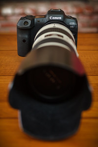 The RF 70-200 F2.8L IS is a few generations newer than mine, offering better optical quality and superior image stabilization when paired with the R5's built-in stabilization