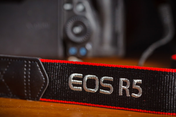 I've attached the strap...R5 is ready for use!