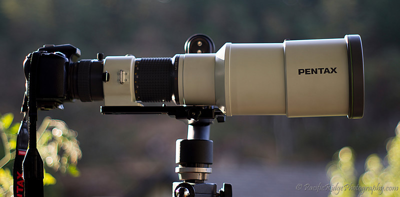 Here is the A*600 mounted on my Wimberley  Gimbal II head.  I've used a fairly long Wimberley arca swiss plate to get the lens back far enough to balance the load.  This is the best setup for using this lens, and usable for tracking moving objects.