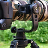 This photo shows my Joby Jr. (type 1) gimbal head holding the Ziuko Digital 90-250/2.8 and Olympus E-3 body+grip. The Gimbal head was modified in that the Al-block holding the quick-release clamp to the elevation axis was shortened by 3 cm and now, together with the 4th Generation design replacement lens foot, the lens is centered over the panning axis - significantly adding stability to the whole rig when the ground isn't flat as a living room floor <br /> <br /> The tripod is my Feisol CT-3472-LVL on which I also have modified levelling mechanism to make it more compact and also to allow for the tripod to go fully down in split with maintained levelling fuctionality and increased stability. I also added a bubble level to the levelling base whic, believe it or not, is not standard on this tripod with a biult-in levelling function.