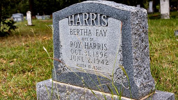 Lamkin-Harris, Bertha Fay (1896-1942