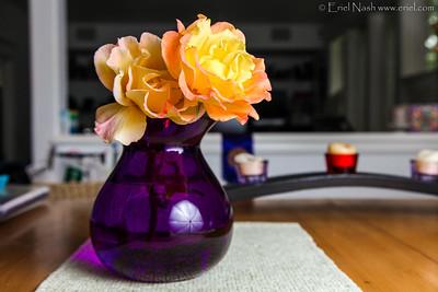 Flowers-20130619-29