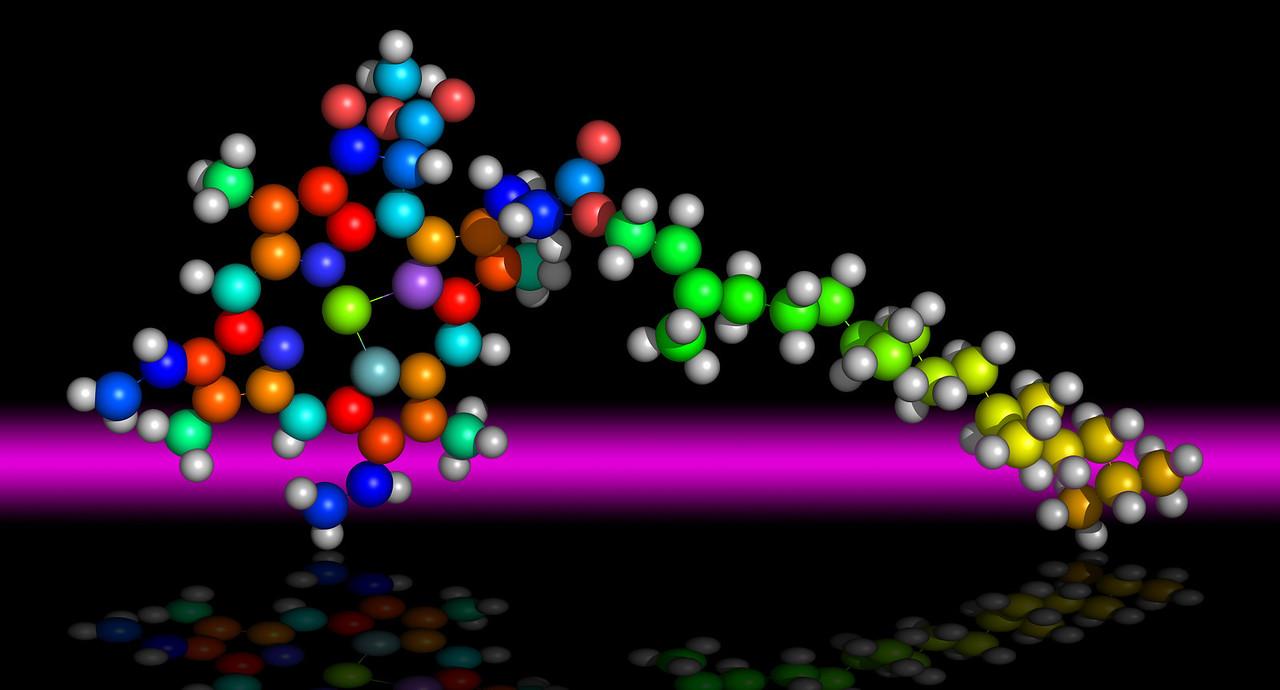 Molecule of Chlorophyll