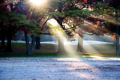 Sunrise at Fabyan Park
