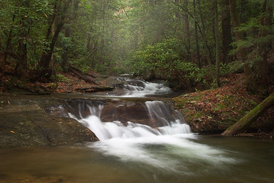 Boggs Creek in the fog