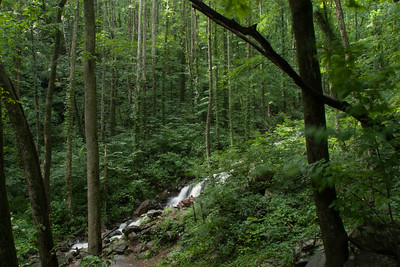 Amicalola Creek