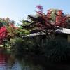 Japanese tea house<br /> Munich, Germany<br /> 10/11/10