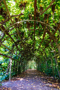 Arbor in Potsdam, Germany