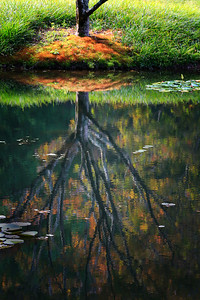 I love reflections and this is one of my favorites.