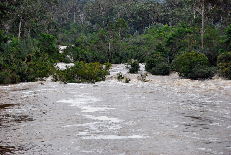 Bemm River in flood..June 2012