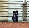 The Guard at Buckingham Palace. London, England.