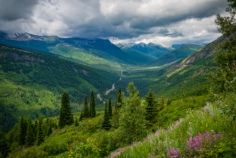 Along the Going to the Sun Road | Glacier National Park