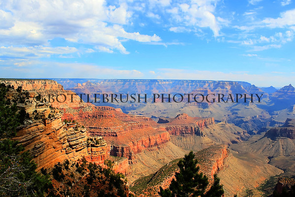 South Rim of the Grand Canyon looking North.