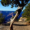 Beautiful Views at the Grand Canyon in Arizona