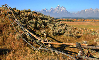 Grand Tetons with Rail Fence
