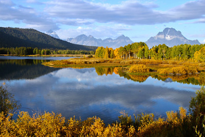 Oxbow Bend with Reflection