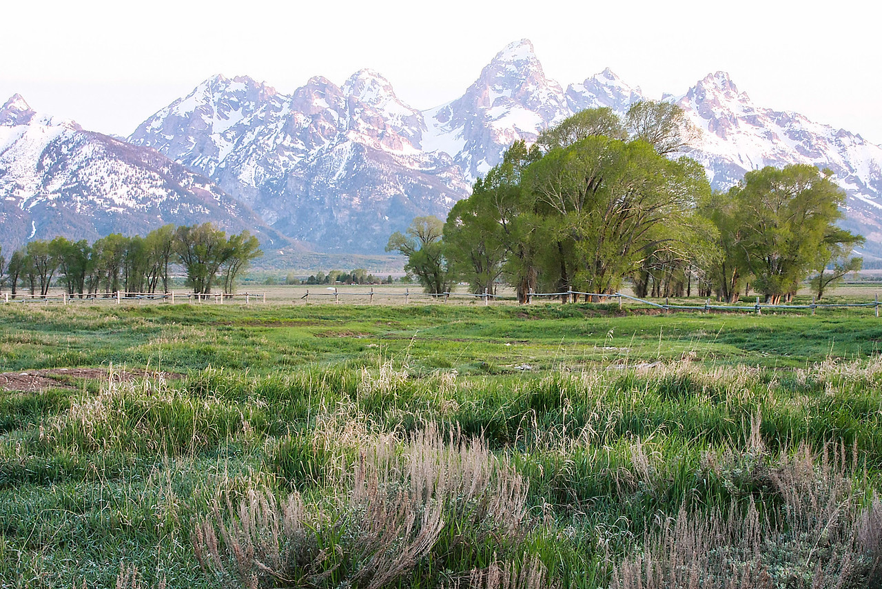 Grand Tetons from Mormon Row Again