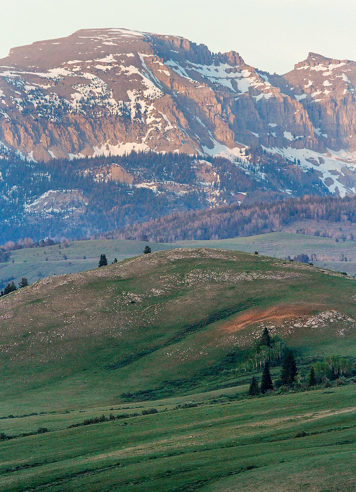 Gros Ventre Wilderness - Sheep Mountain