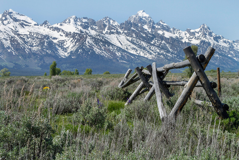 Grand Tetons from Antelope Flats