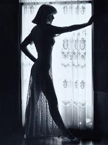Lace Dress Silhouette