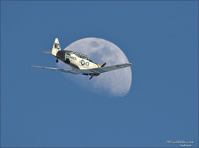 Anyone for a ride to the moon? [we waited all day for a plane to zoom thru the moon during the show. Finally!