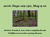Photo set for Days 129-130, May 9-10, 2016