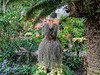 Bromeliad dress by Avant Garden