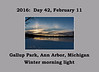 Photo Set for February 11, 2016: Atmospheric optical effects in the winter sky
