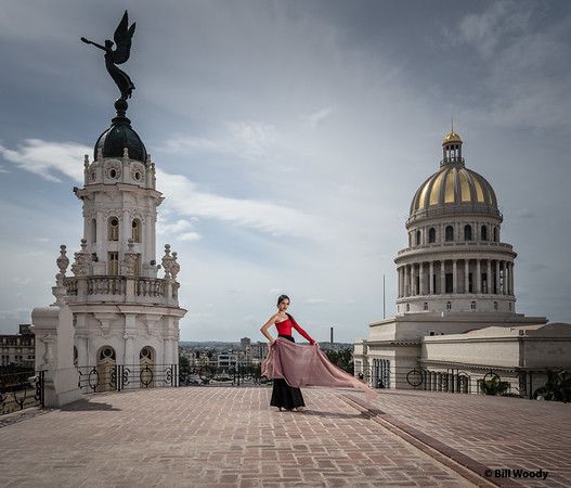 Flamenco above Havana